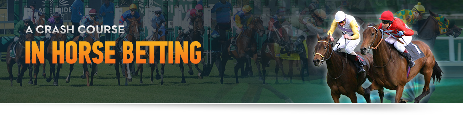A Crash Course in Horse Race Betting - How to Bet on Horses