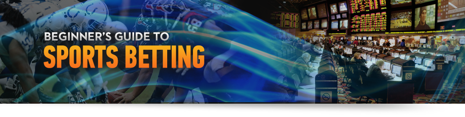 Sports betting for beginners uk how to bet coins on twitch