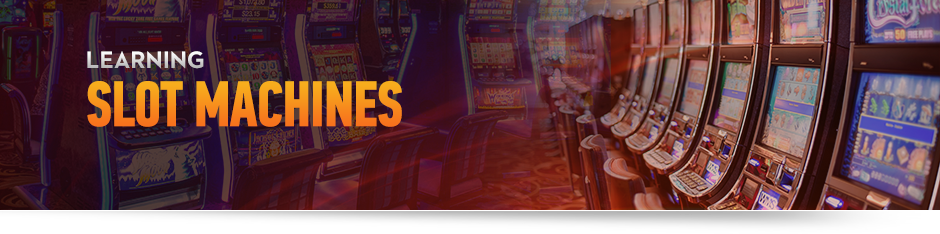 10 Best Video Poker Games and How to Play Them