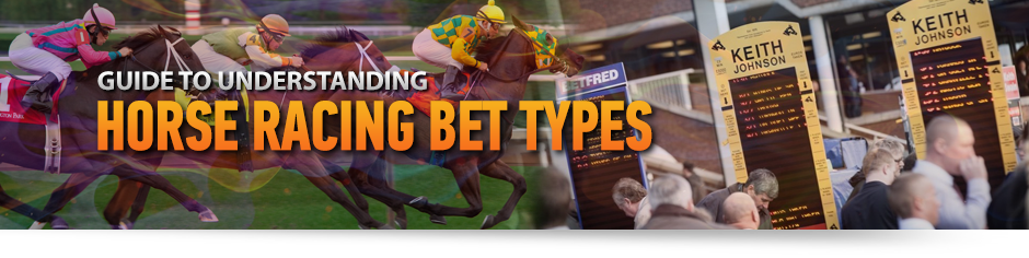 Understanding betting odds in horse racing betting line broncos seahawks super