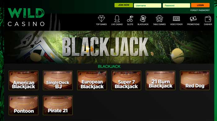 Wild Casino Blackjack Screenshot