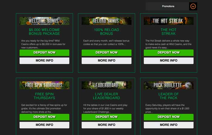 Wild Casino Promotions Screenshot
