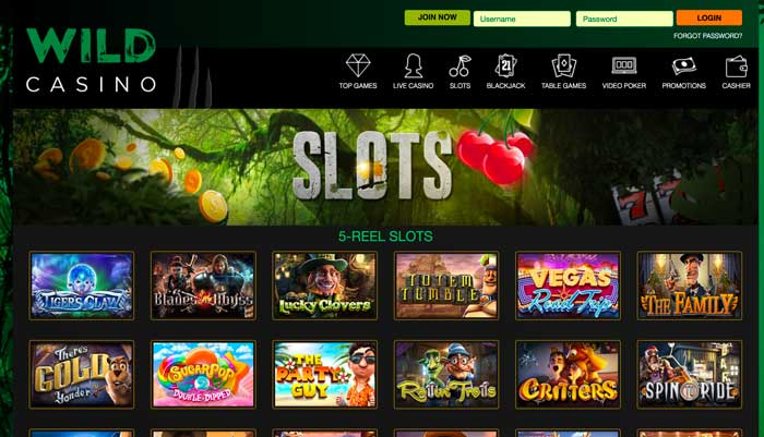 Wild Casino Slots Screenshot